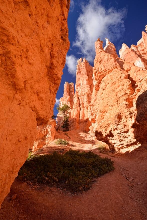 Dans le canyon de Bryce