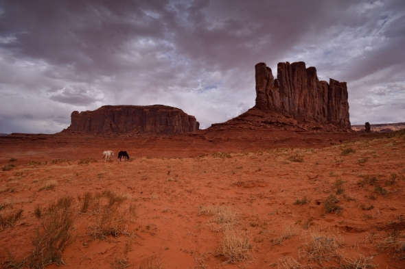 Monument valley horses under big clouds